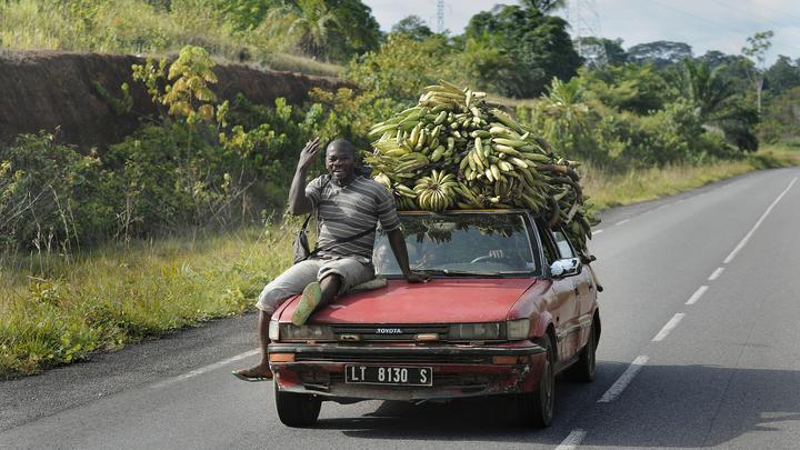Дёшево и сердито: В Африке из бананов будут строить автомобили