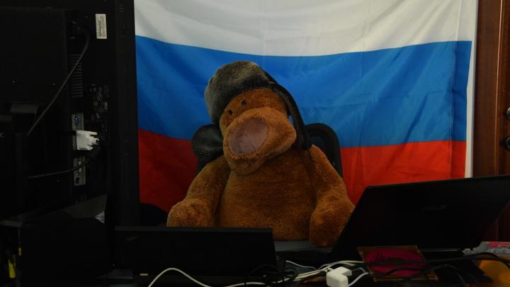 Американцы не нашли, найдут русские. Лошак готовит фейк о вмешательстве в выборы США - RT