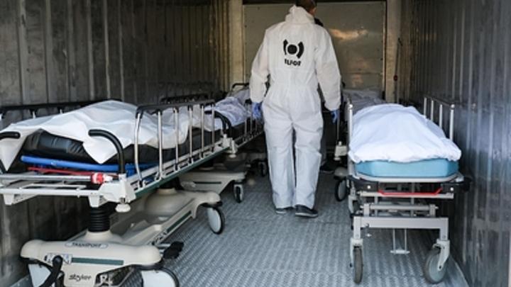 Свыше 500 трупов за 24 часа: Россия обновила рекорд по смертям от COVID-19
