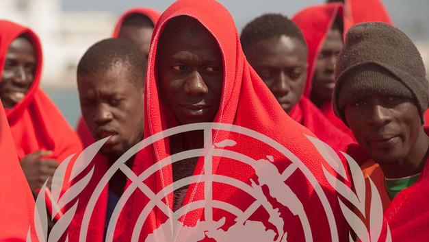 Что не так со Всемирным днем беженцев