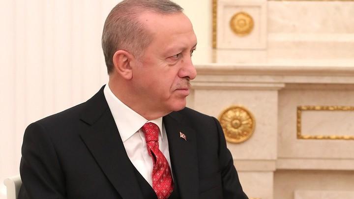Путин пригласил Эрдогана в Сибирь - познавать Россию