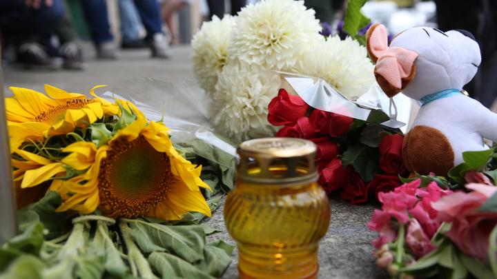 Вина Украины уже доказана: Бородай назвал очевидной причастность Киева к крушению MH17