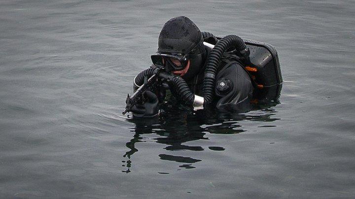 К берегам Камчатки приближаются новые пятна неизвестного происхождения - Greenpeace