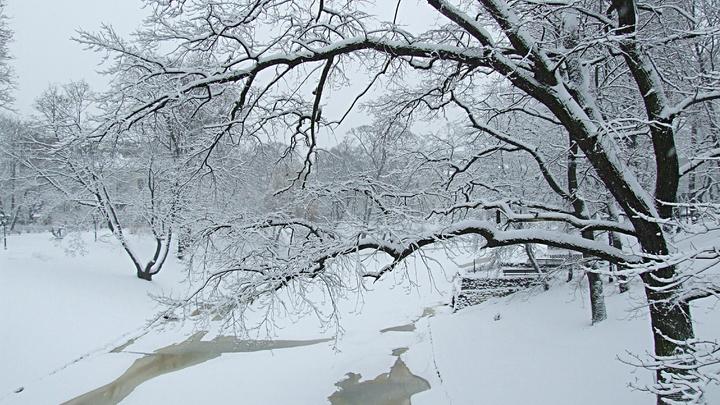 МЧС: в Нижегородской области ожидаются аномальные морозы