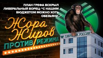 План Грефа вскрыл либеральный борец: С нашим бюджетом можно хоть обезьяну...