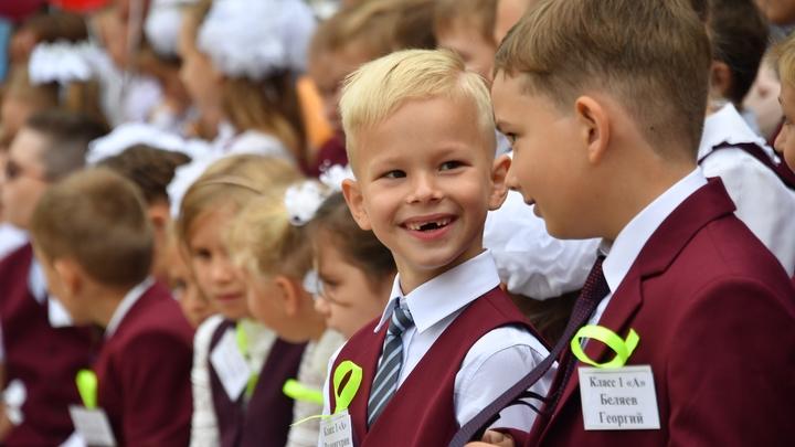 На детей в России дадут ещё одно пособие: Минтруд уточнил, кто получит деньги от государства