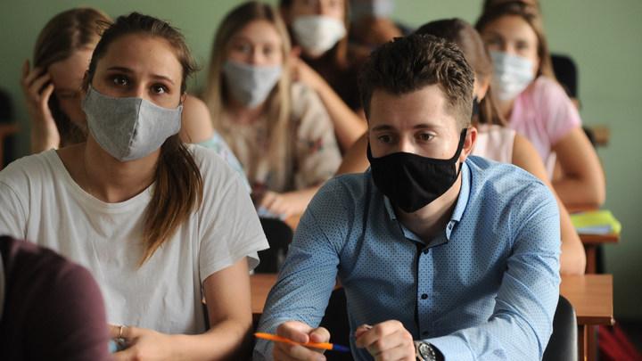 Петербуржцев в соцсетях рассорила угроза новой «дистанционки» для детей