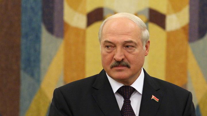 Надо лопату в зубы: Лукашенко загонит на работу белорусов специфическим способом