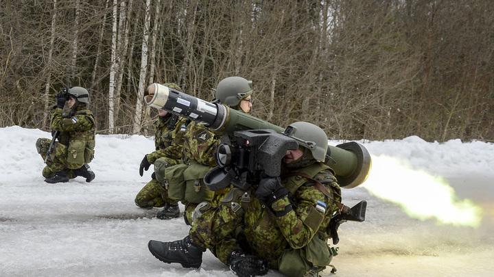 Утка крякнула: Служу России!: Всего одна птица смогла сорвать учения НАТО в Польше