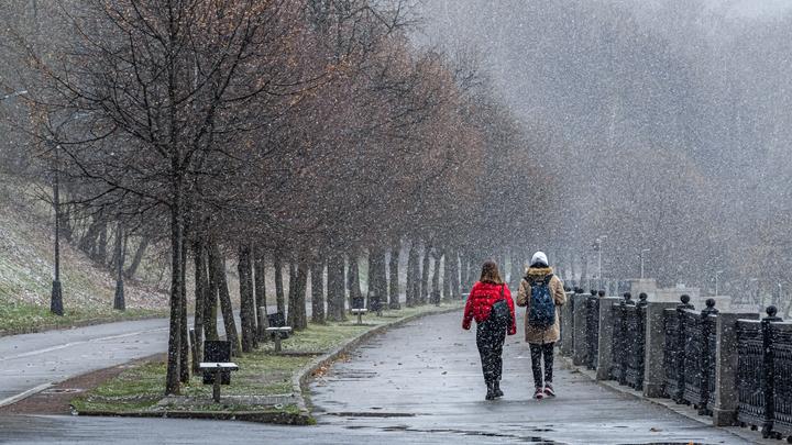 Первый снег в Подмосковье ожидается 20 сентября