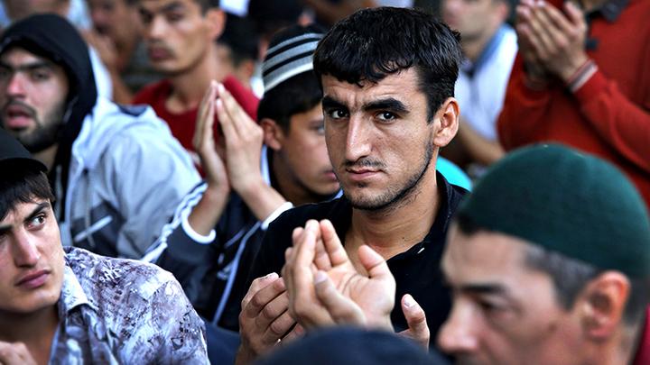Мигранты, мигранты, кругом одни мигранты: Социальная болезнь прогрессирует