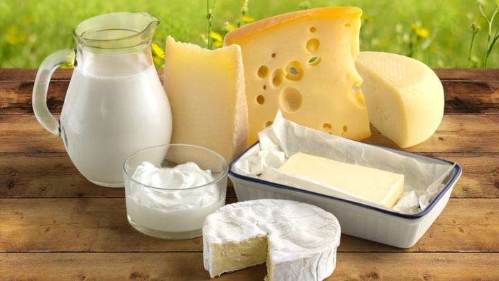 Молоко, творог, сливочное масло: Что показала тотальная проверка рынка