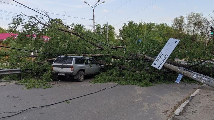 Десятки поваленных деревьев: оцениваем последствия урагана в Нижегородской области