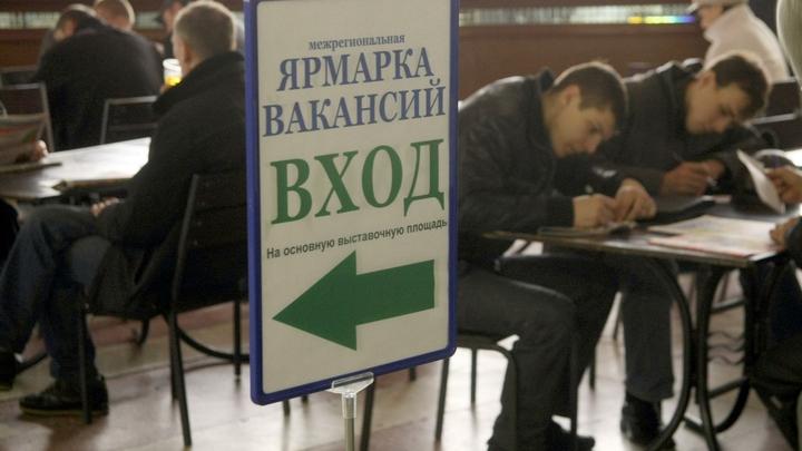 Центр при правительстве пообещал каждому пятому выпускнику безработицу