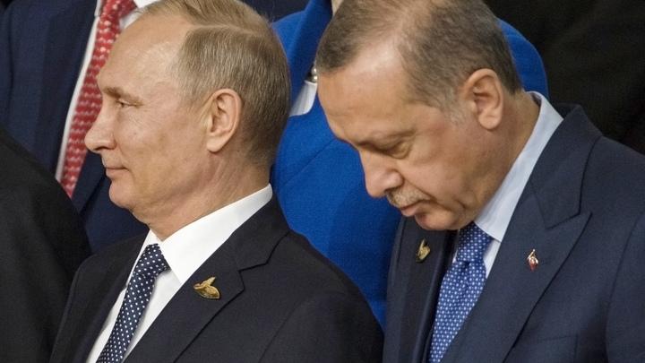 В Кремле сочли вероятной встречу Путина и Эрдогана в скором времени