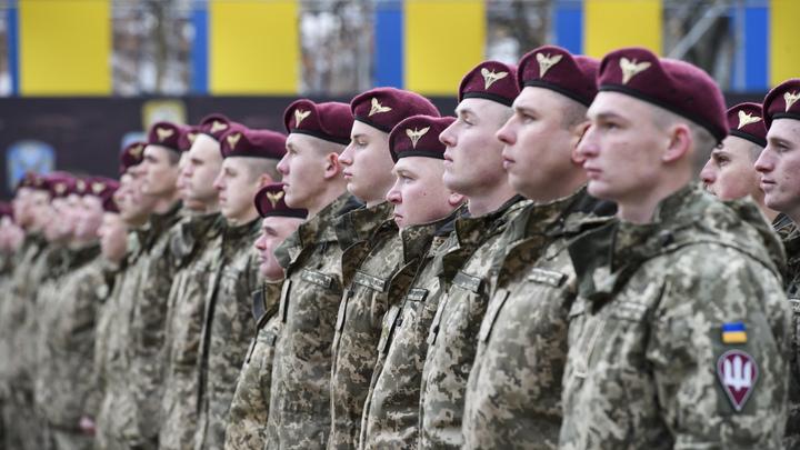 Донбасса уже мало: Киев открыл в Запорожье новую «АТО»