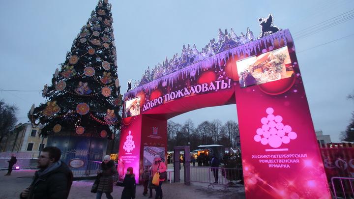 В Санкт-Петербурге за два месяца до Нового года установили первую елку