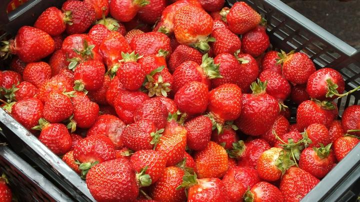 Клубника подойдёт не только для варенья: Садовод подсказала, как ещё использовать урожай ягод