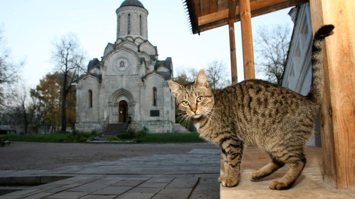 Никакого выселения даже в мыслях нет: Священник назвал домыслами сообщения о выселении Музея Андрея Рублёва
