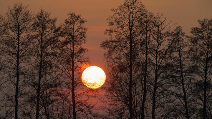 Учёный оценил опасность для здоровья недавней вспышки на Солнце: Таких давно не было