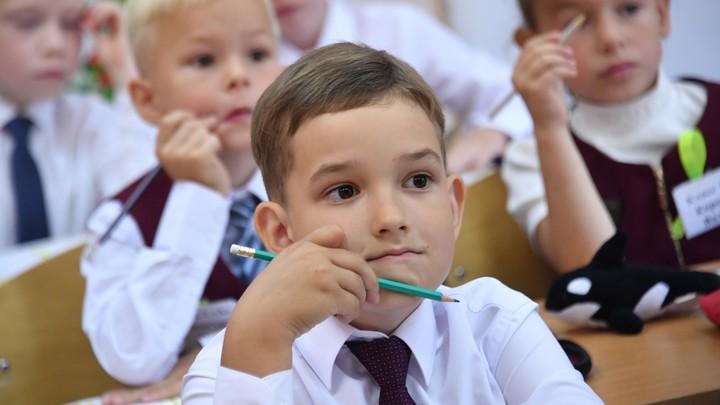 В школах Челябинской области дистанта не будет