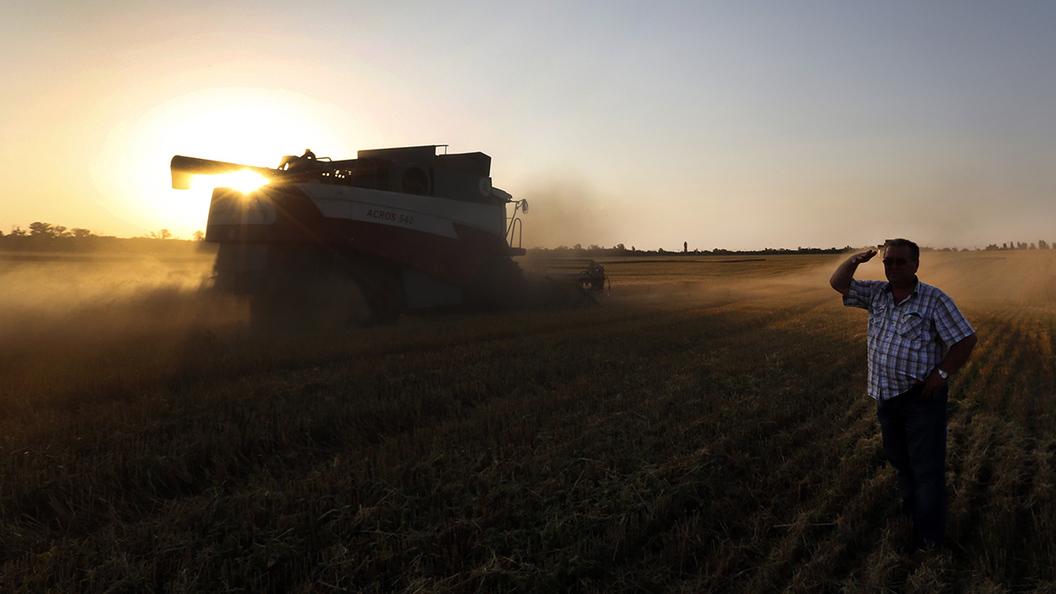 США могут уступить России на зерновом рынке