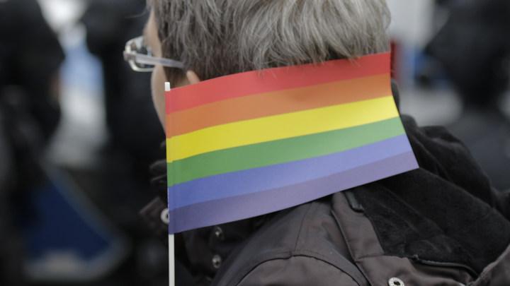 Лишь бы этой чумы в России не было: В Сети опешили от идеи изучения истории геев в США