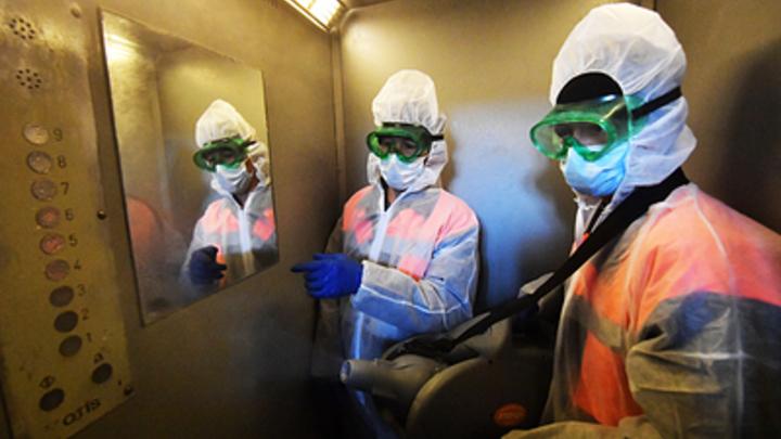 Погибших заражённых больше десятка: В Подмосковье прибавилось сразу три умерших с COVID-19