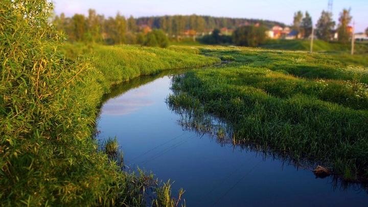 За сброс отходов у реки в Солнечногорске оштрафовали компанию Подрезково