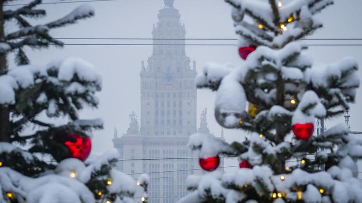 Надо экономику поднимать: Онищенко предсказал отмену новогодних каникул