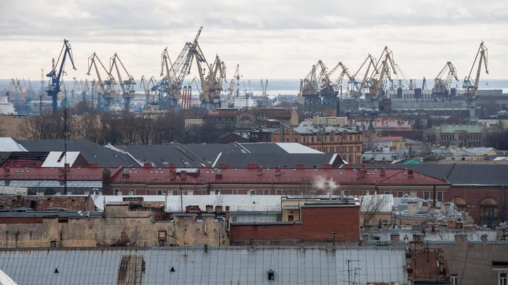 Петербург временно отказался от фестиваля Roof Fest из-за COVID-19