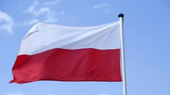 Президент Польши послал Украину лесом: Антибандеровский закон будет подписан
