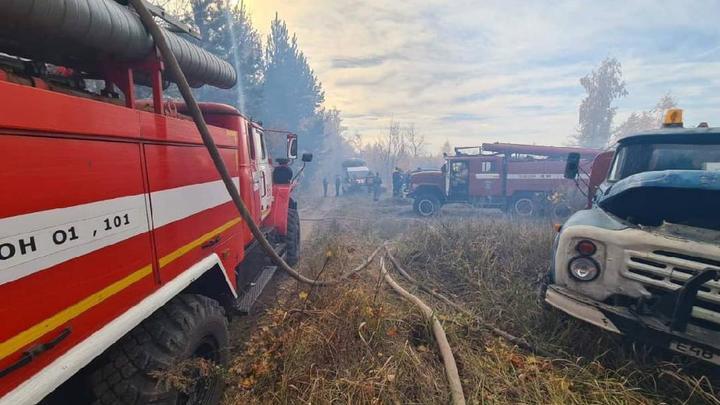 В лесу Тольятти произошел третий серьёзный пожар за 2021 год