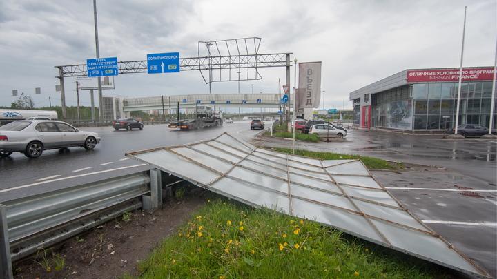 Пирамида Голода из бетона: Создатель снесенной ураганом в Москве пирамиды пообещал построить новую