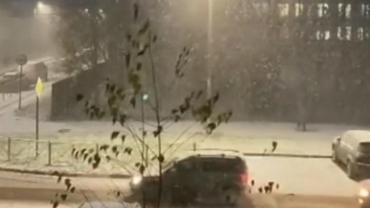 Как снег на голову! Зима опять пришла в Санкт-Петербург неожиданно