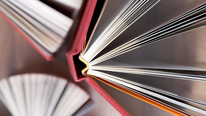 Сменят книги на кружевные трусики? На Украине решили избавиться от миллионов советских изданий