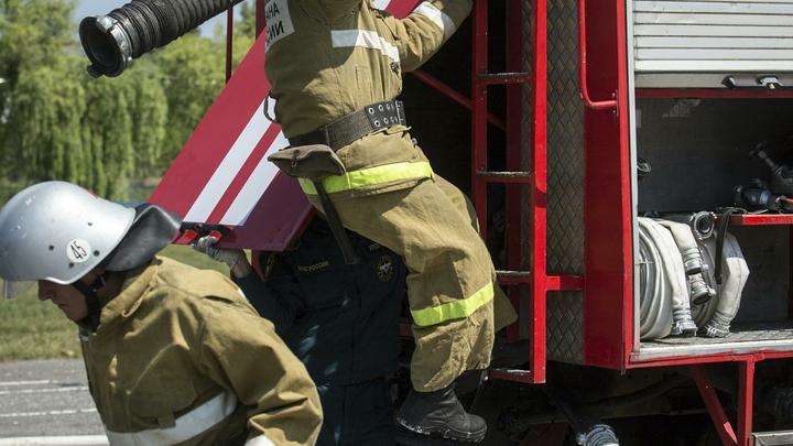В Приморье пожарные спасли из огня кота Стёпку, снискав этим славу в Рунете