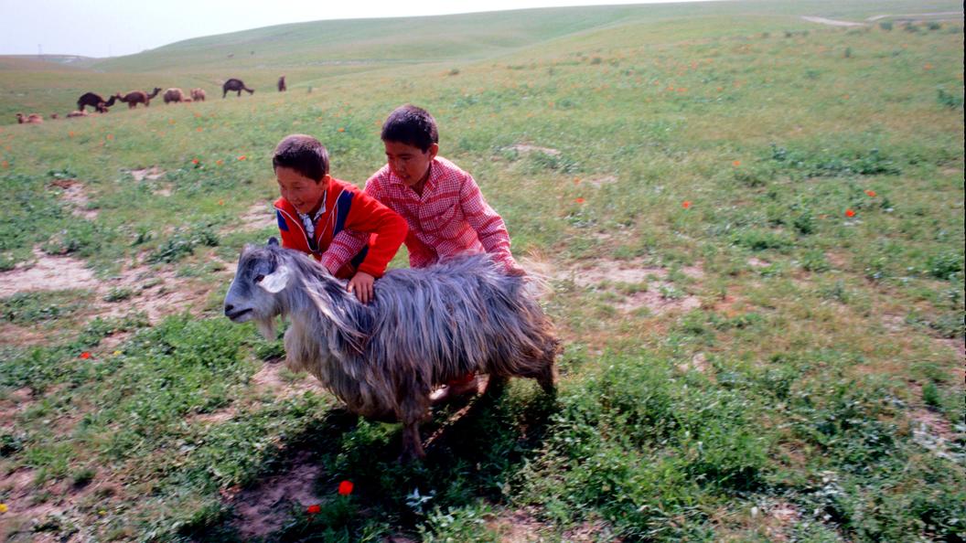 Совфед предлагает ввести визы для граждан Средней Азии