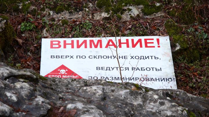 ВДНР сообщили оподрыве украинских военных насобственных минах