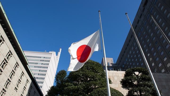 Японцам нужен не мирный договор, а территория России — эксперт