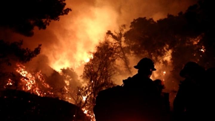 Американский врач бьёт тревогу: Обнаружена связь между пожарами и COVID-19