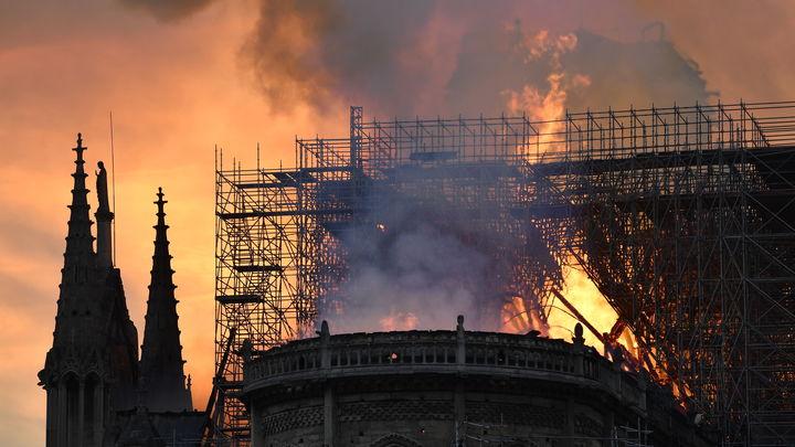Россия готова поставлять древесину для реставрации Нотр-Дама — Песков