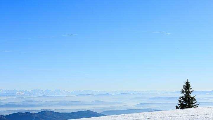 Палатки на склоне горы никогда не было: В деле гибели студентов на перевале Дятлова заподозрили подтасовку