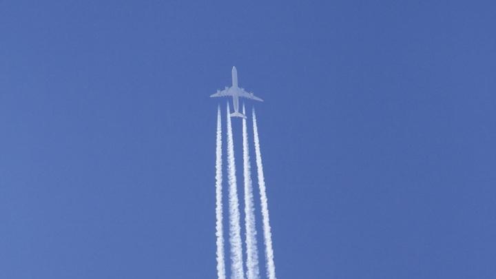 Мы не полетим!: Пассажиры в Новосибирске в панике покинули самолёт, который долго не могли завести