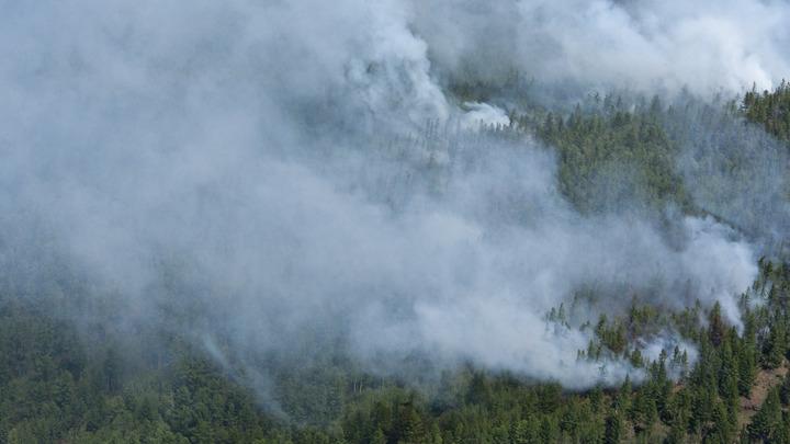 Стихийное бедствие заставило Киев предложить Донбассу перемирие