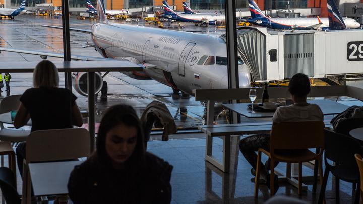 Приступают к осмотру: На борту севшего в Москве самолёта ищут бомбу - источник