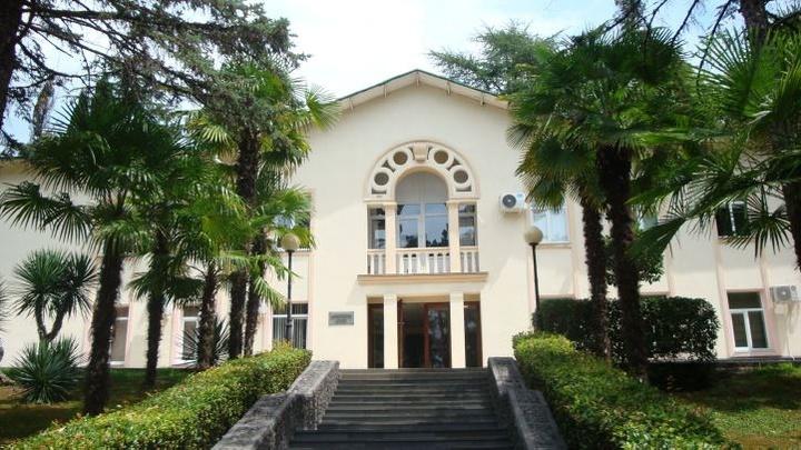 В Сочи санатории «Родина» и «Золотой Колос» взяли под охрану