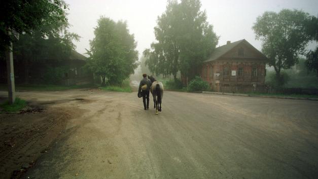 «Меня собирали как на войну»: На Камчатке депутат приехал на коне в Заксобрание