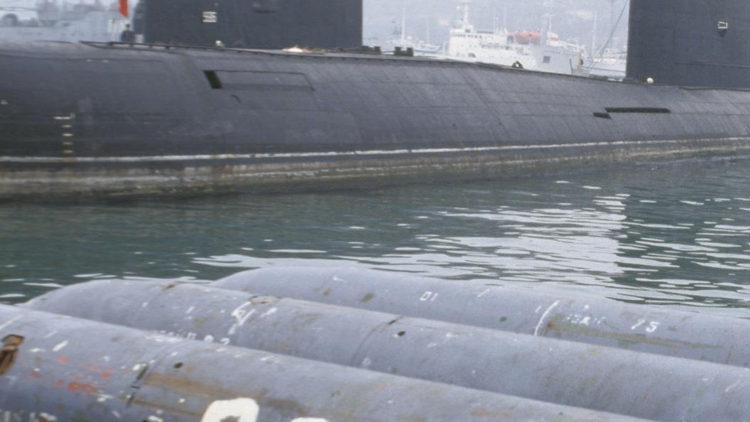 Неимеющий аналогов вмире русский «Кит» отдельно способен потопить авианосец