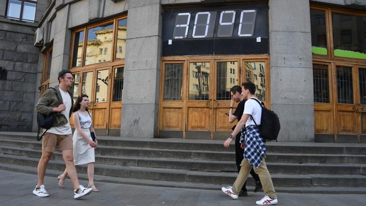 На Кубань идет жара в 36°С